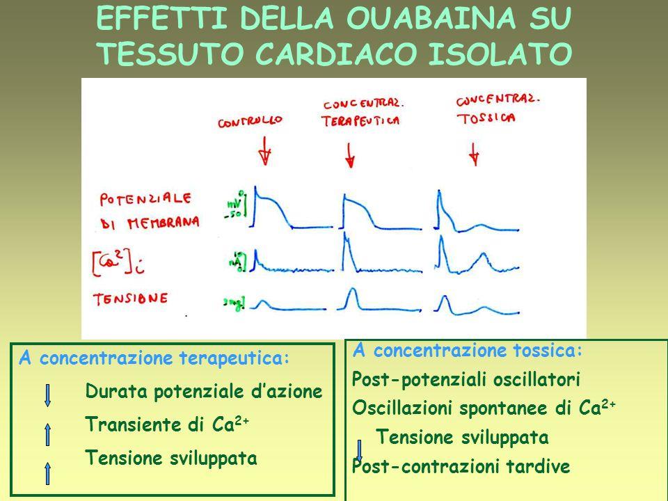 DOBUTAMINA (miscela racemica) Stimolazione 1 e 2 Enantiomero (-): stimolazione 1 e 2 Enantiomero (+): bloccante Non attivo sui recettori per la dopamina Effetto inotropo positivo Vasolilatazione: riduzione del post-carico Effetti sulla pressione e sulla frequenza cardiaca variabili Problemi: tolerance, difficile svezzamento