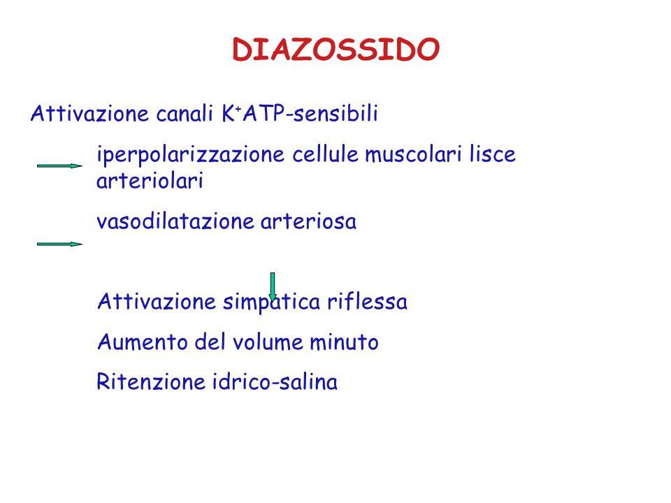 DIAZOSSIDO Attivazione canali K + ATP-sensibili iperpolarizzazione cellule muscolari lisce arteriolari vasodilatazione arteriosa Attivazione simpatica riflessa Aumento del volume minuto Ritenzione idrico-salina
