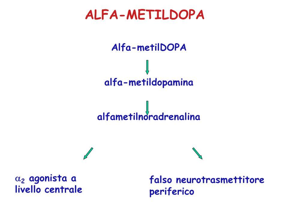 ALFA-METILDOPA Alfa-metilDOPA alfa-metildopamina alfametilnoradrenalina 2 agonista a livello centrale falso neurotrasmettitore periferico