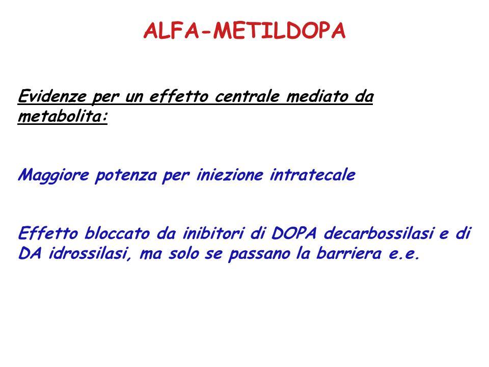 ALFA-METILDOPA Evidenze per un effetto centrale mediato da metabolita: Maggiore potenza per iniezione intratecale Effetto bloccato da inibitori di DOPA decarbossilasi e di DA idrossilasi, ma solo se passano la barriera e.e.