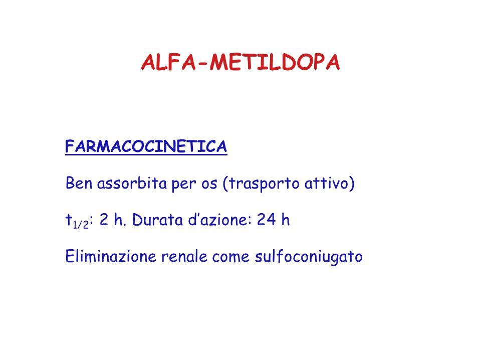 ALFA-METILDOPA FARMACOCINETICA Ben assorbita per os (trasporto attivo) t 1/2 : 2 h. Durata dazione: 24 h Eliminazione renale come sulfoconiugato