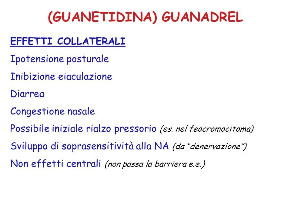 (GUANETIDINA) GUANADREL EFFETTI COLLATERALI Ipotensione posturale Inibizione eiaculazione Diarrea Congestione nasale Possibile iniziale rialzo pressor