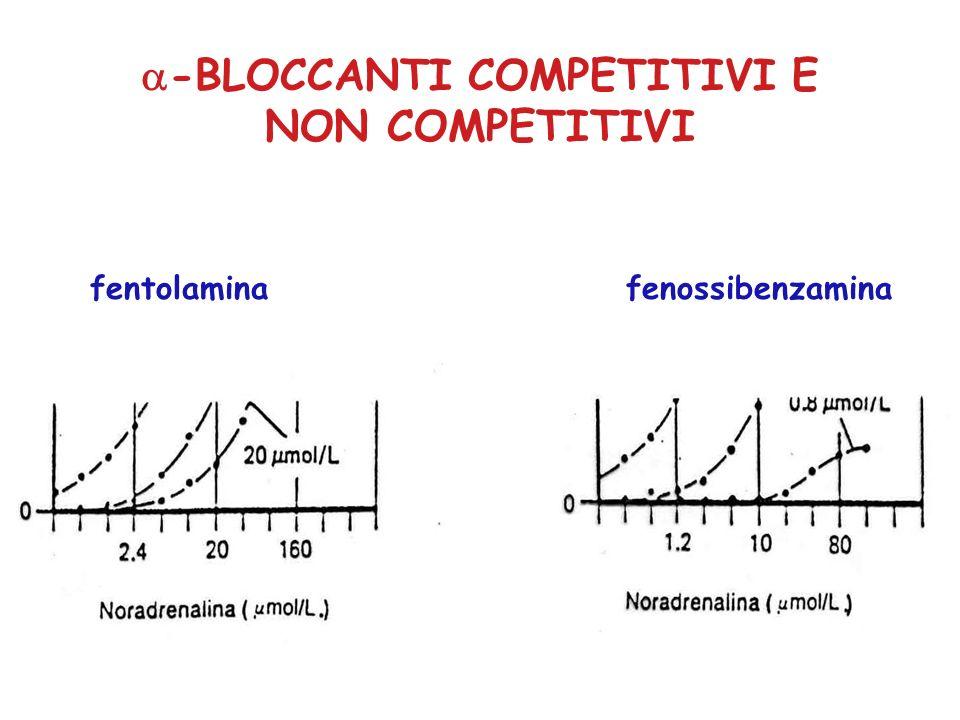 -BLOCCANTI COMPETITIVI E NON COMPETITIVI fentolaminafenossibenzamina