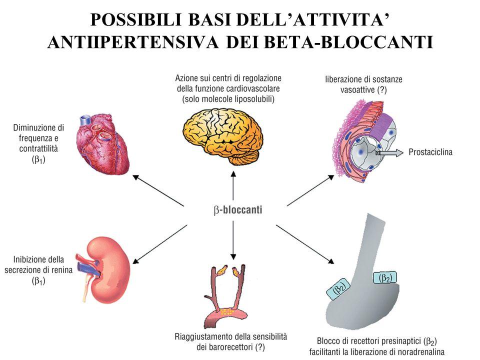 POSSIBILI BASI DELLATTIVITA ANTIIPERTENSIVA DEI BETA-BLOCCANTI