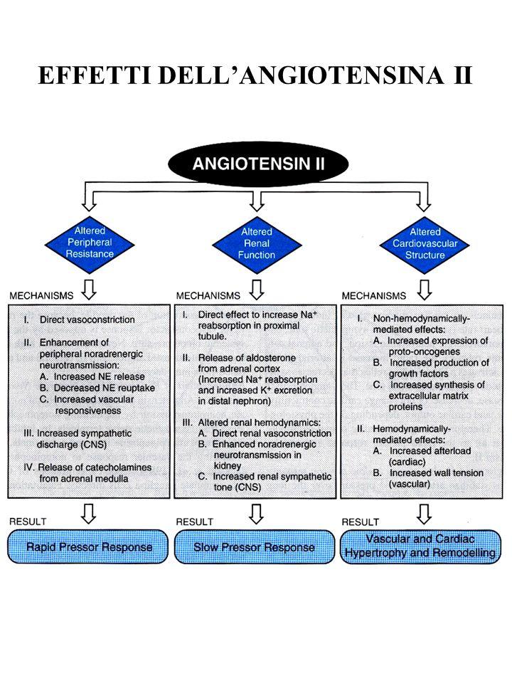 ANGIOTENSINA II: STABILIZZAZIONE DELLA PRESSIONE ARTERIOSA Basso intake di Na + :aumento produzione di renina spostamento a dx della curva pressione-natriuresi
