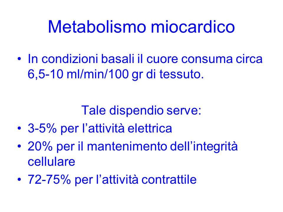 Metabolismo miocardico In condizioni basali il cuore consuma circa 6,5-10 ml/min/100 gr di tessuto. Tale dispendio serve: 3-5% per lattività elettrica