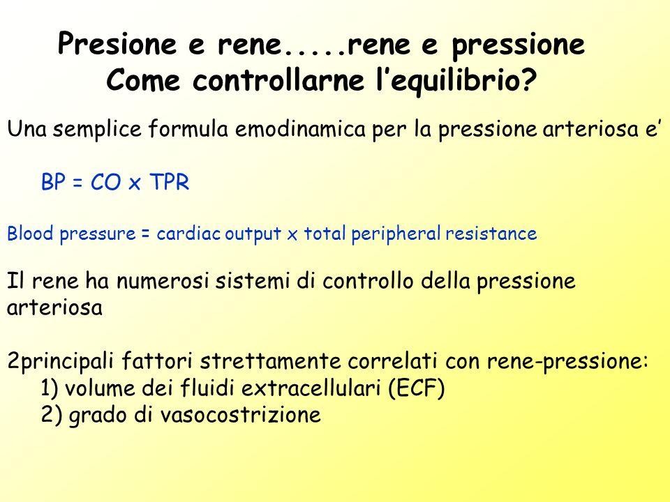 Presione e rene.....rene e pressione Come controllarne lequilibrio? Una semplice formula emodinamica per la pressione arteriosa e BP = CO x TPR Blood