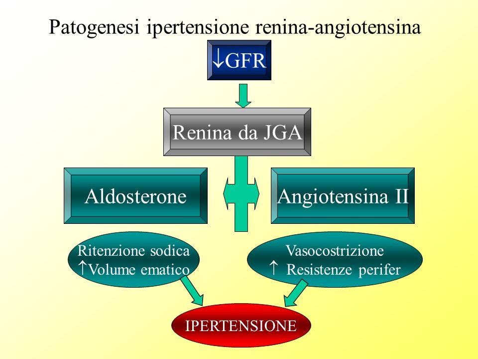 Patogenesi ipertensione renina-angiotensina GFR Renina da JGA Angiotensina II Vasocostrizione Resistenze perifer Ritenzione sodica Volume ematico Aldo