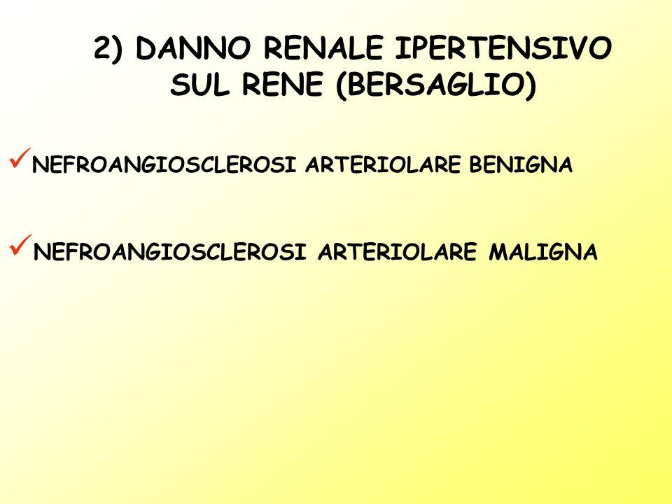 NEFROANGIOSCLEROSI ARTERIOLARE BENIGNA NEFROANGIOSCLEROSI ARTERIOLARE MALIGNA 2) DANNO RENALE IPERTENSIVO SUL RENE (BERSAGLIO)