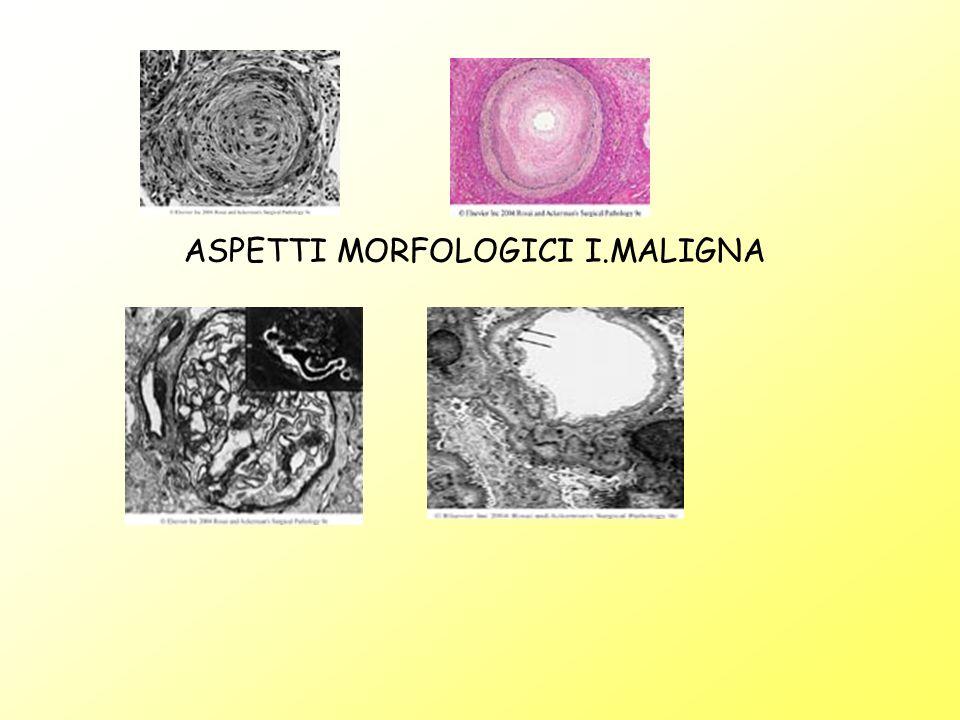 ASPETTI MORFOLOGICI I.MALIGNA