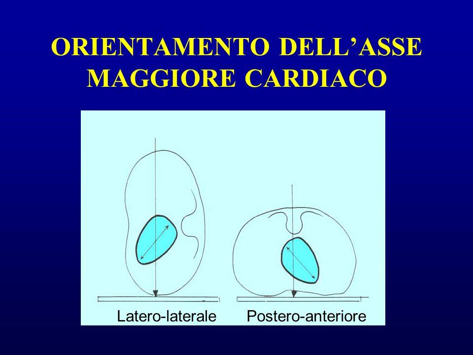 ORIENTAMENTO DELLASSE MAGGIORE CARDIACO Latero-lateralePostero-anteriore