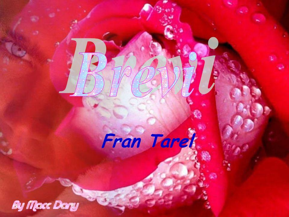 Fran Tarel