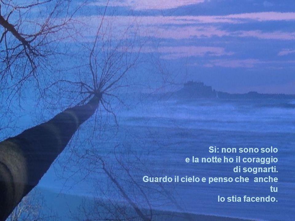 Si: non sono solo e la notte ho il coraggio di sognarti.
