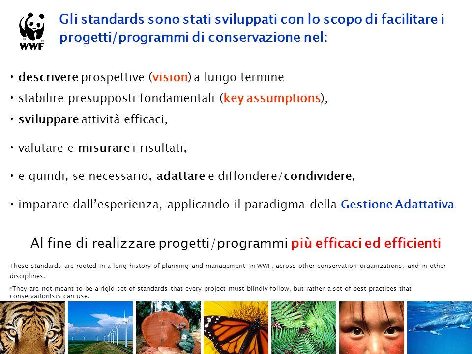 Il processo di definizione di Target di Conservazione per la Regione Toscana processo: 1.individuazione di un set (6-8) di target di conservazione in grado di rappresentare lintero panorama della biodiversità regionale.