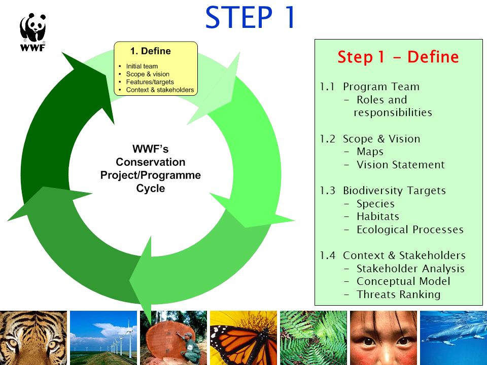Step 1 - Define 1.1 Program Team - Roles and responsibilities 1.2 Scope & Vision - Maps - Vision Statement 1.3 Biodiversity Targets - Species - Habita