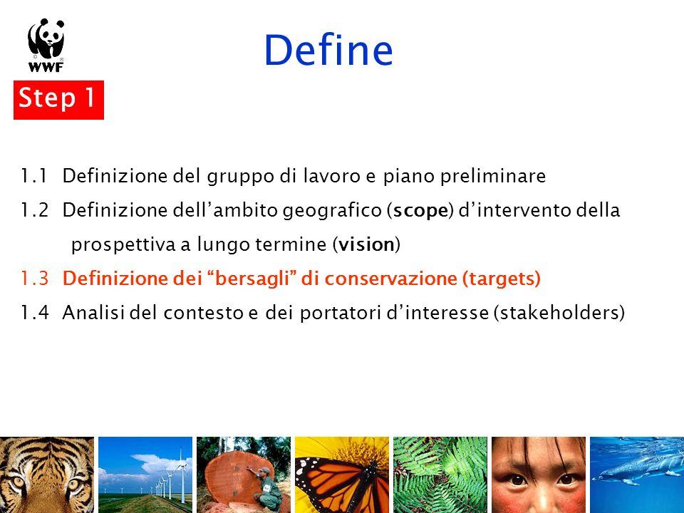 Define Targets Target di biodiversità : gli ecosistemi, le specie, i processi ecologici sui quali un progetto ha deciso di concentrarsi.