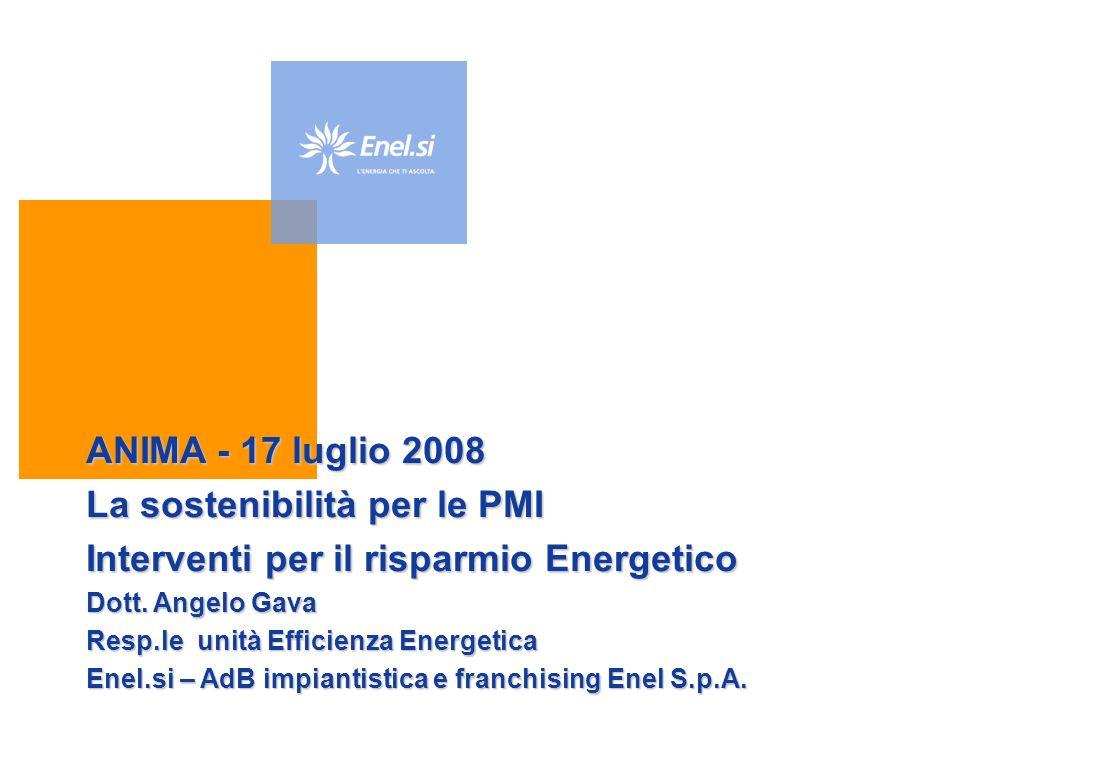 ANIMA - 17 luglio 2008 La sostenibilità per le PMI Interventi per il risparmio Energetico Dott.