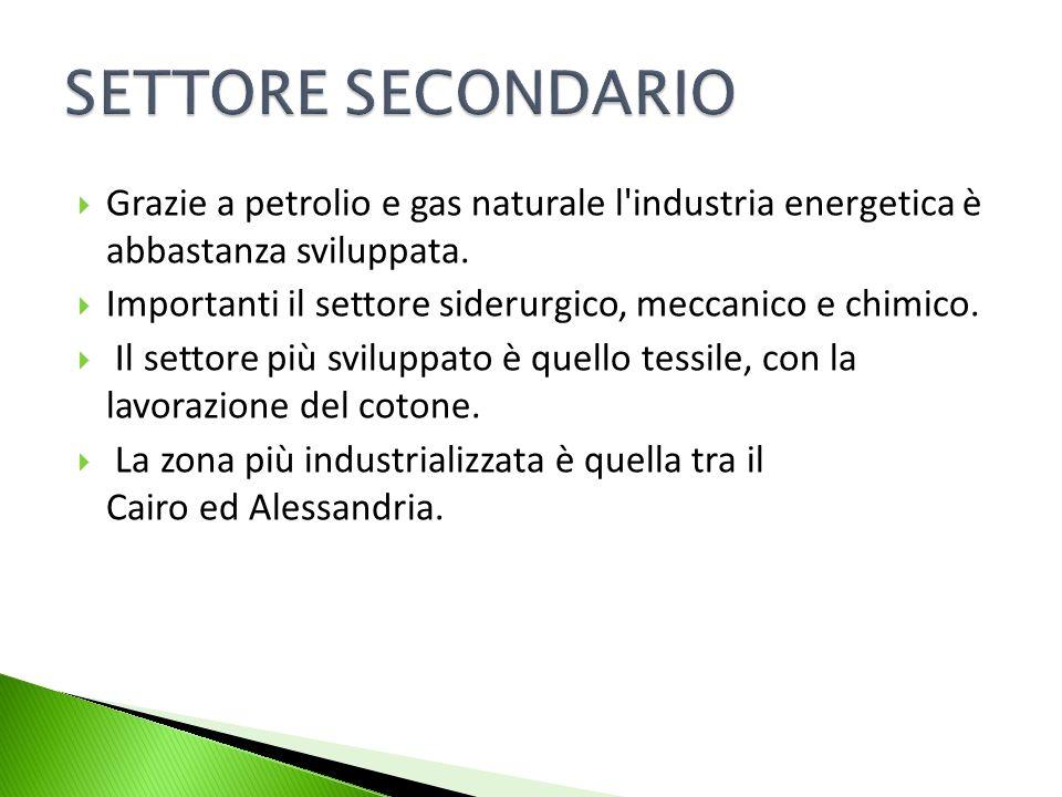 Grazie a petrolio e gas naturale l'industria energetica è abbastanza sviluppata. Importanti il settore siderurgico, meccanico e chimico. Il settore pi