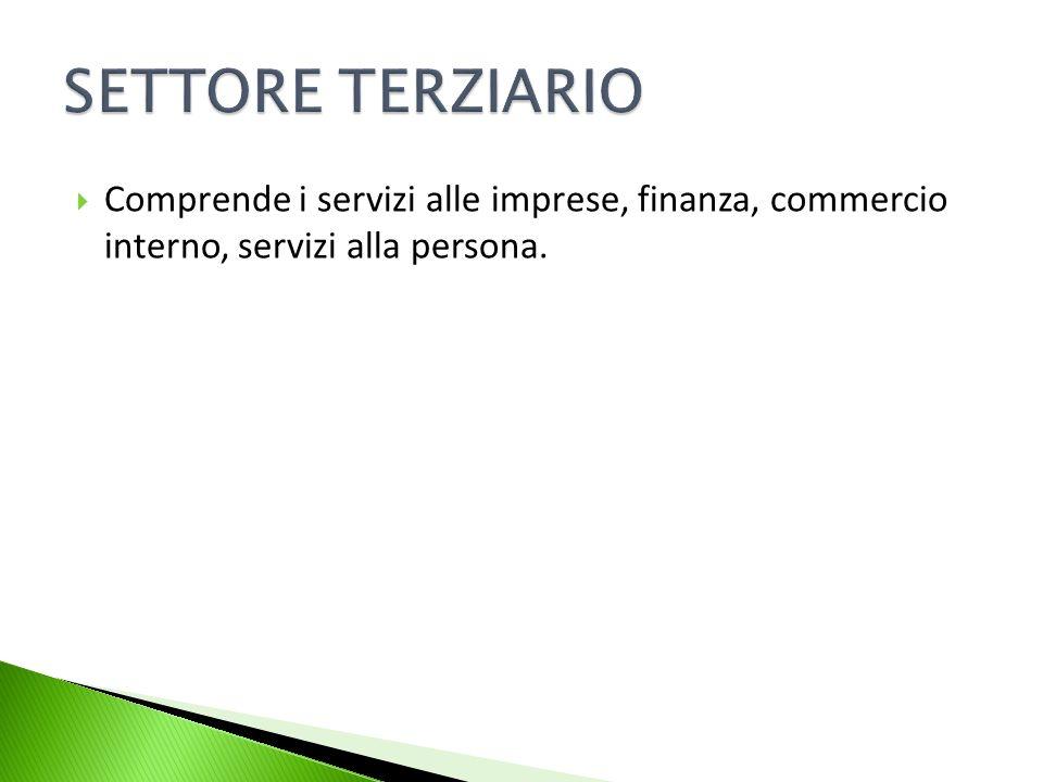 Comprende i servizi alle imprese, finanza, commercio interno, servizi alla persona.