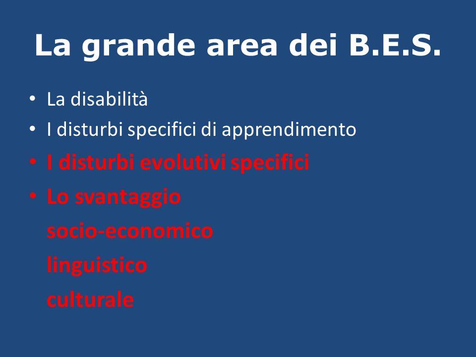 La grande area dei B.E.S. La disabilità I disturbi specifici di apprendimento I disturbi evolutivi specifici Lo svantaggio socio-economico linguistico