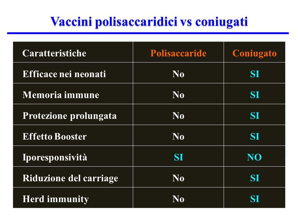 Vaccini polisaccaridici vs coniugati CaratteristichePolisaccarideConiugato Efficace nei neonatiNoSI Memoria immuneNoSI Protezione prolungataNoSI Effetto BoosterNoSI IporesponsivitàSINO Riduzione del carriageNoSI Herd immunityNoSI