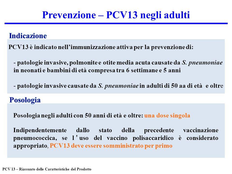 Prevenzione – PCV13 negli adulti PCV13 è indicato nellimmunizzazione attiva per la prevenzione di: - patologie invasive, polmonite e otite media acuta causate da S.