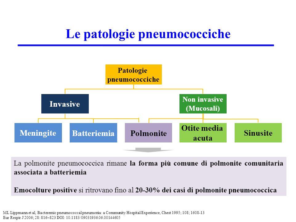Le patologie pneumococciche Patologie pneumococciche Invasive Non invasive (Mucosali) Polmonite Otite media acuta Sinusite Meningite Batteriemia La polmonite pneumococcica rimane la forma più comune di polmonite comunitaria associata a batteriemia Emocolture positive si ritrovano fino al 20-30% dei casi di polmonite pneumococcica ML Lippmann et al, Bacteremic pneumococcal pneumonia: a Community Hospital Experience, Chest 1995; 108; 1608-13 Eur Respir J 2006; 28: 816–823 DOI: 10.1183/09031936.06.00144605