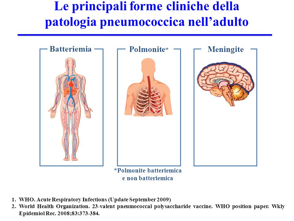 1.WHO. Acute Respiratory Infections (Update September 2009) 2.World Health Organization. 23-valent pneumococcal polysaccharide vaccine. WHO position p