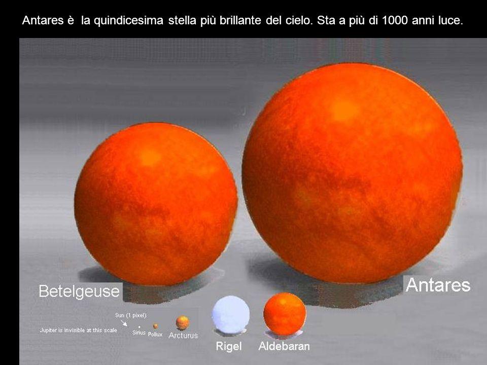 Antares è la quindicesima stella più brillante del cielo. Sta a più di 1000 anni luce.