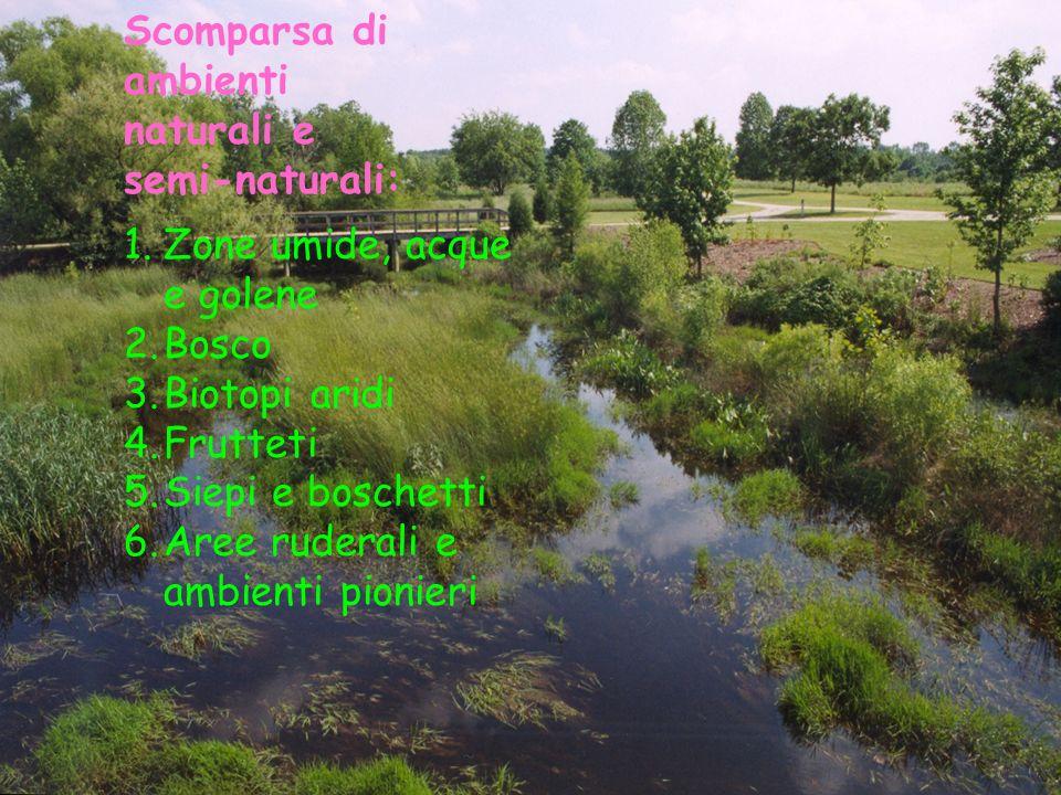 Scomparsa di ambienti naturali e semi-naturali: 1.Zone umide, acque e golene 2.Bosco 3.Biotopi aridi 4.Frutteti 5.Siepi e boschetti 6.Aree ruderali e