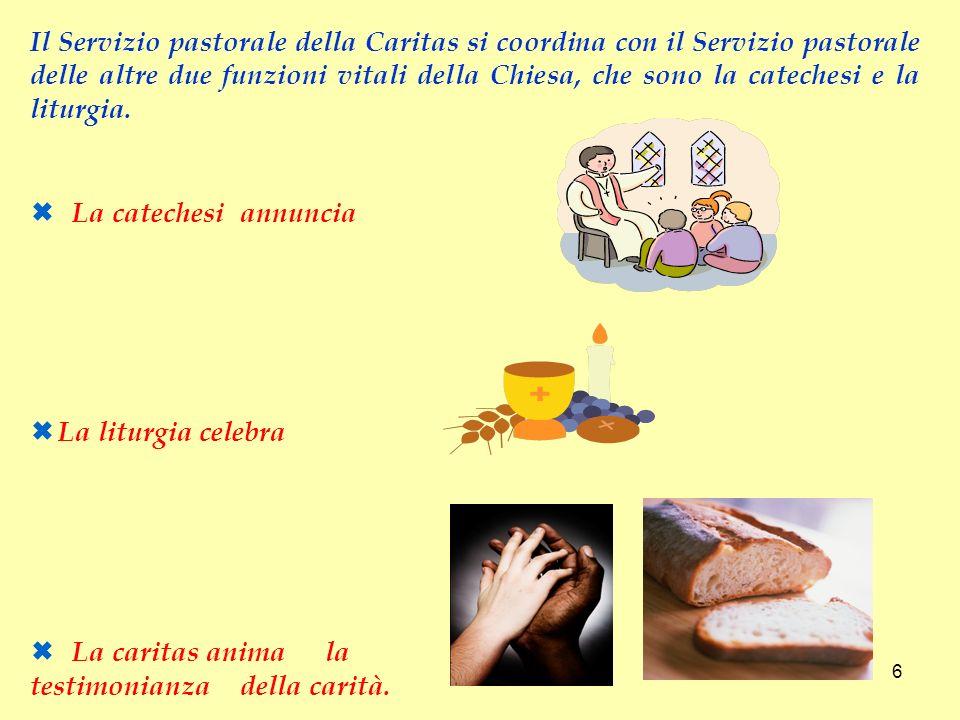 La catechesi annuncia La liturgia celebra La caritas anima la testimonianza della carità. Il Servizio pastorale della Caritas si coordina con il Servi