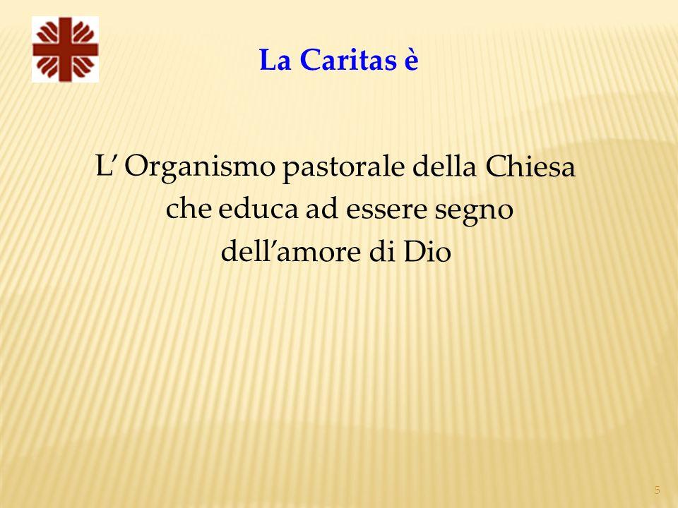 5 La Caritas è L Organismo pastorale della Chiesa che educa ad essere segno dellamore di Dio