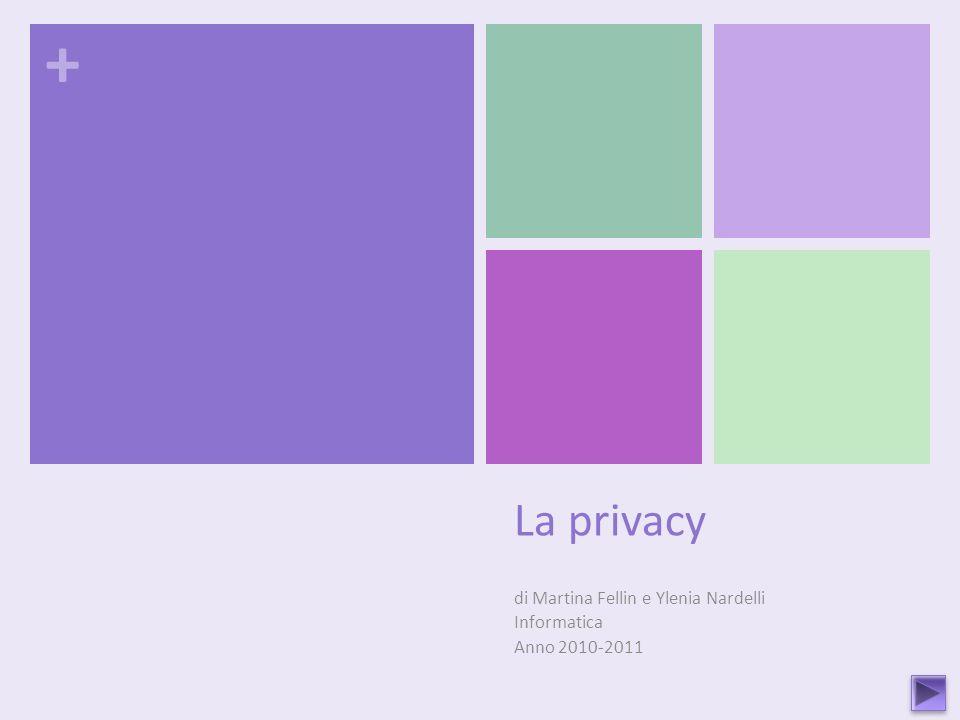 + La privacy di Martina Fellin e Ylenia Nardelli Informatica Anno 2010-2011