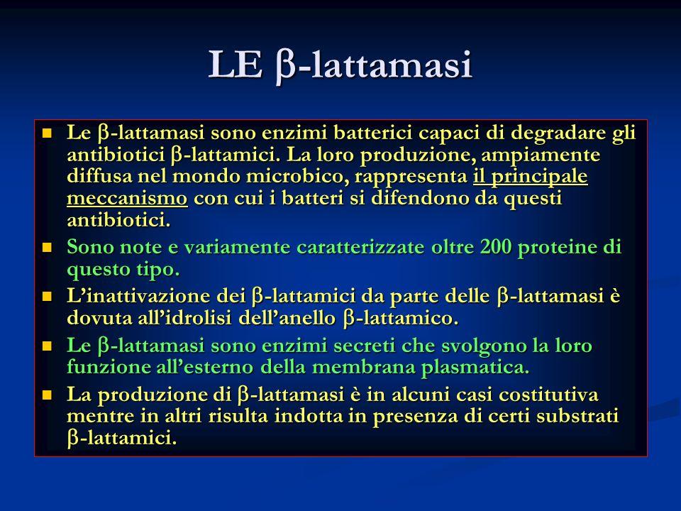 LE -lattamasi Le -lattamasi sono enzimi batterici capaci di degradare gli antibiotici -lattamici. La loro produzione, ampiamente diffusa nel mondo mic