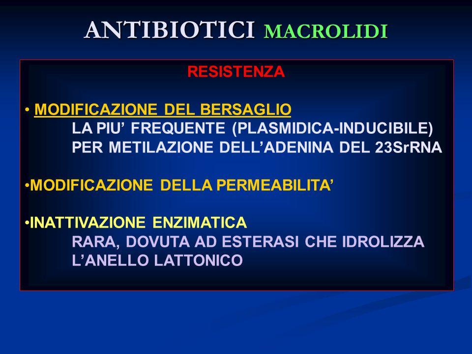 ANTIBIOTICI MACROLIDI RESISTENZA MODIFICAZIONE DEL BERSAGLIO LA PIU FREQUENTE (PLASMIDICA-INDUCIBILE) PER METILAZIONE DELLADENINA DEL 23SrRNA MODIFICA
