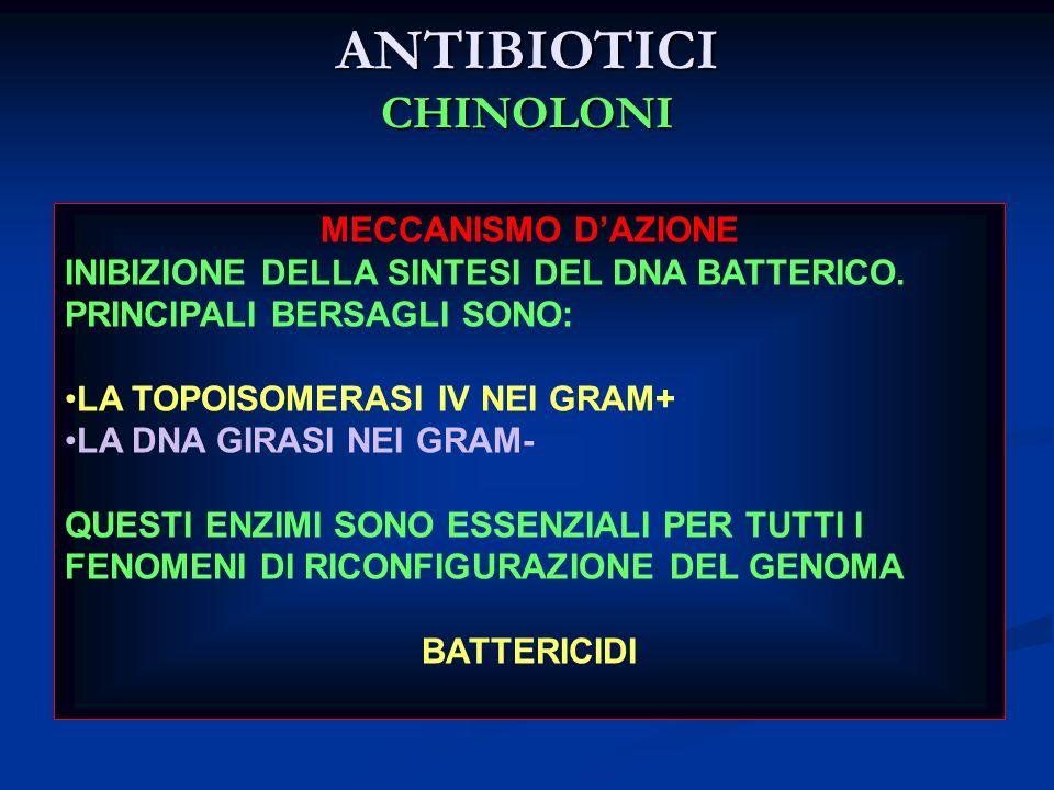 ANTIBIOTICI CHINOLONI MECCANISMO DAZIONE INIBIZIONE DELLA SINTESI DEL DNA BATTERICO. PRINCIPALI BERSAGLI SONO: LA TOPOISOMERASI IV NEI GRAM+ LA DNA GI