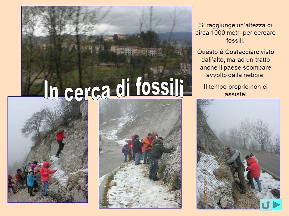 Si raggiunge unaltezza di circa 1000 metri per cercare fossili. Questo è Costacciaro visto dallalto, ma ad un tratto anche il paese scompare avvolto d