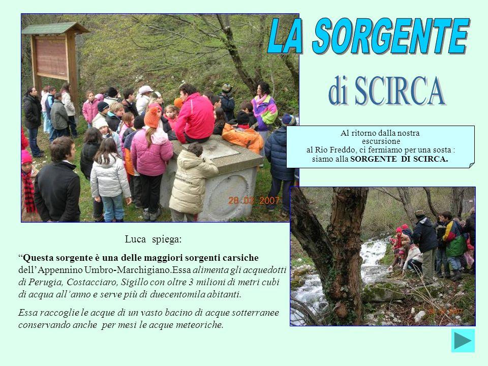 Luca spiega: Questa sorgente è una delle maggiori sorgenti carsiche dellAppennino Umbro-Marchigiano.Essa alimenta gli acquedotti di Perugia, Costaccia