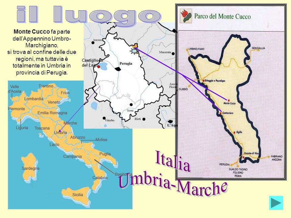 Monte Cucco fa parte dellAppennino Umbro- Marchigiano, si trova al confine delle due regioni, ma tuttavia è totalmente in Umbria in provincia di Perug