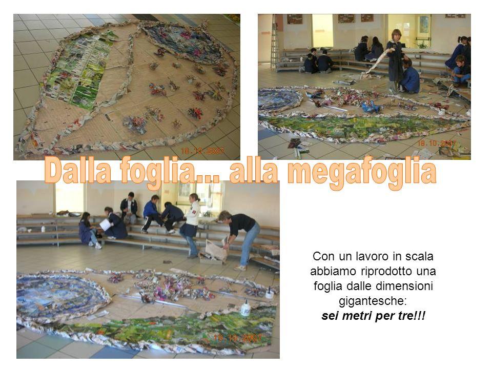 Con un lavoro in scala abbiamo riprodotto una foglia dalle dimensioni gigantesche: sei metri per tre!!!