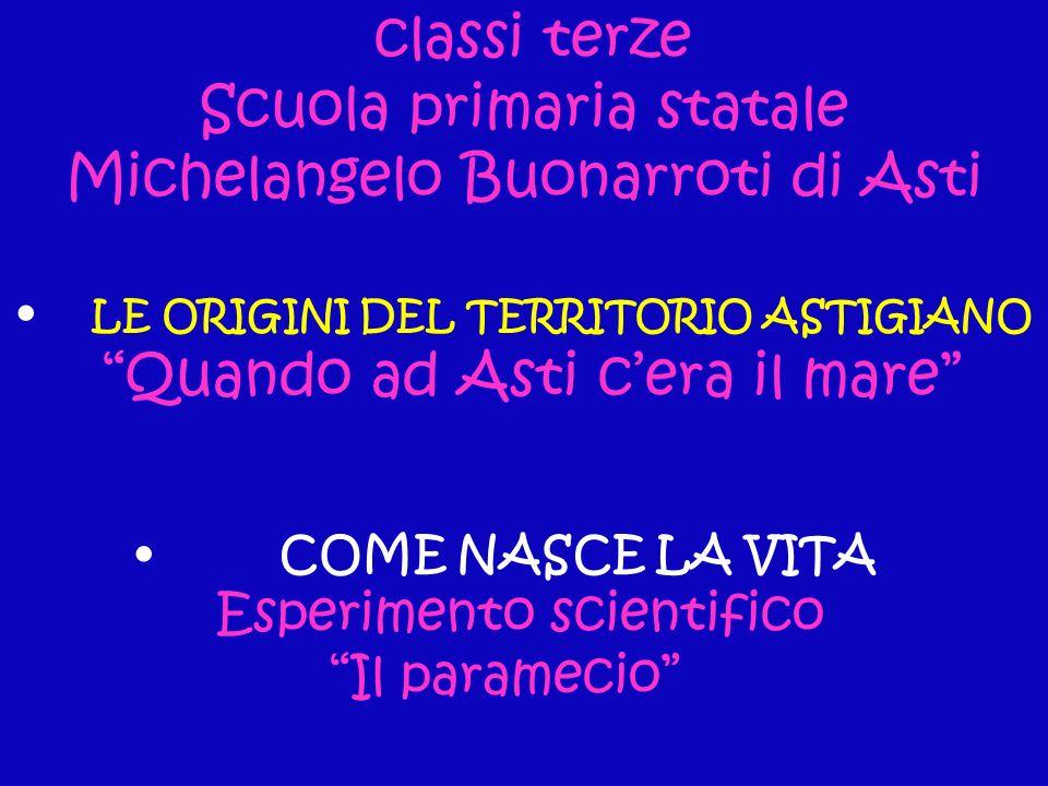 LE ORIGINI DEL TERRITORIO ASTIGIANO Quando ad Asti cera il mare classi terze Scuola primaria statale Michelangelo Buonarroti di Asti COME NASCE LA VIT