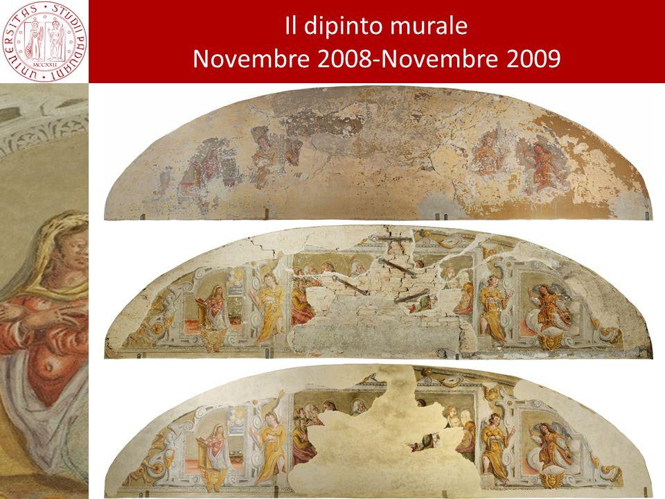 Chi ha contribuito alla realizzazione del restauro Il dipinto murale Novembre 2008-Novembre 2009