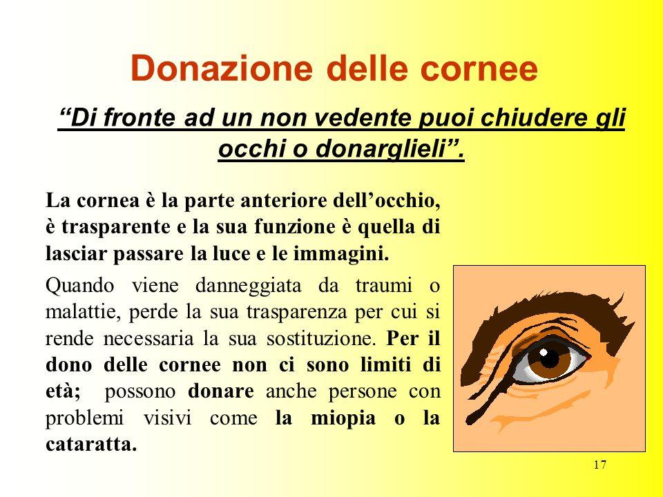 17 Donazione delle cornee La cornea è la parte anteriore dellocchio, è trasparente e la sua funzione è quella di lasciar passare la luce e le immagini