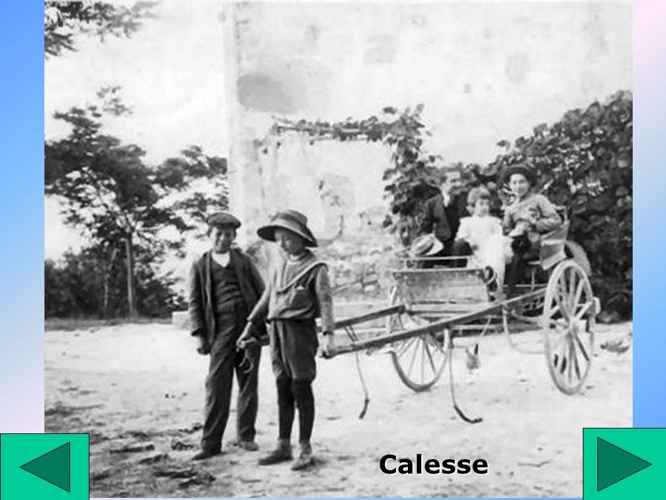 Calesse