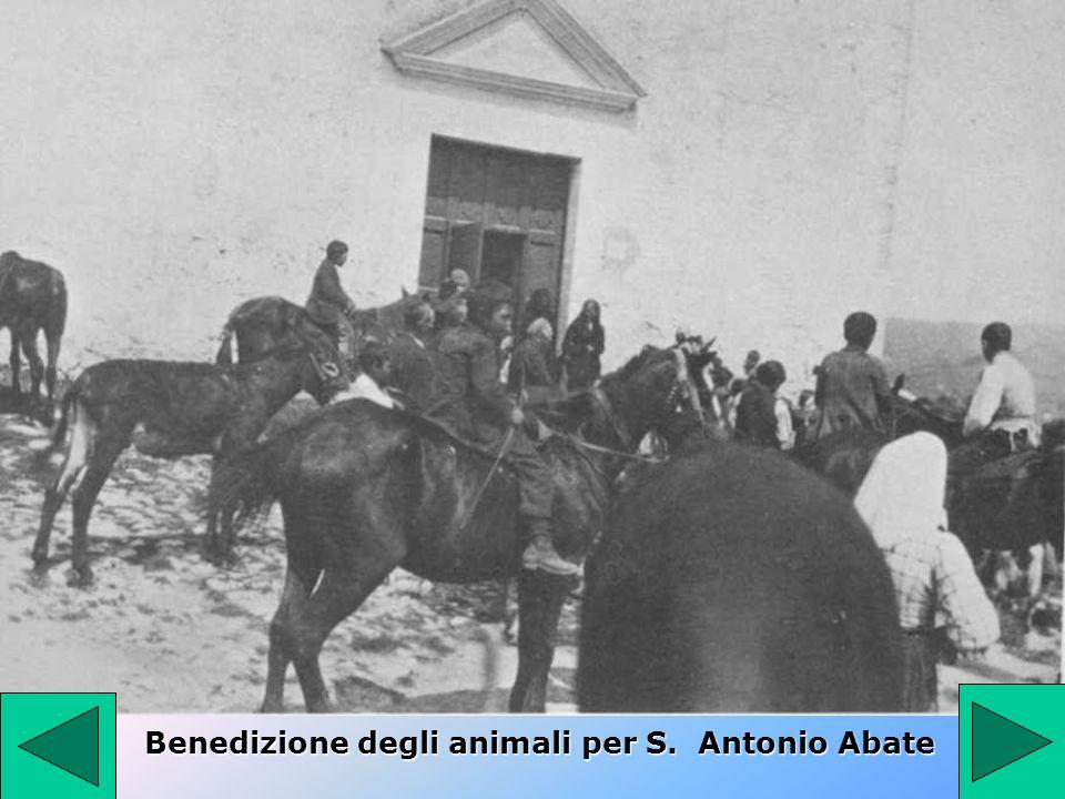Benedizione degli animali per S. Antonio Abate