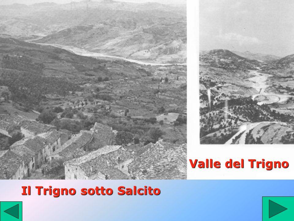 Il Trigno sotto Salcito Valle del Trigno