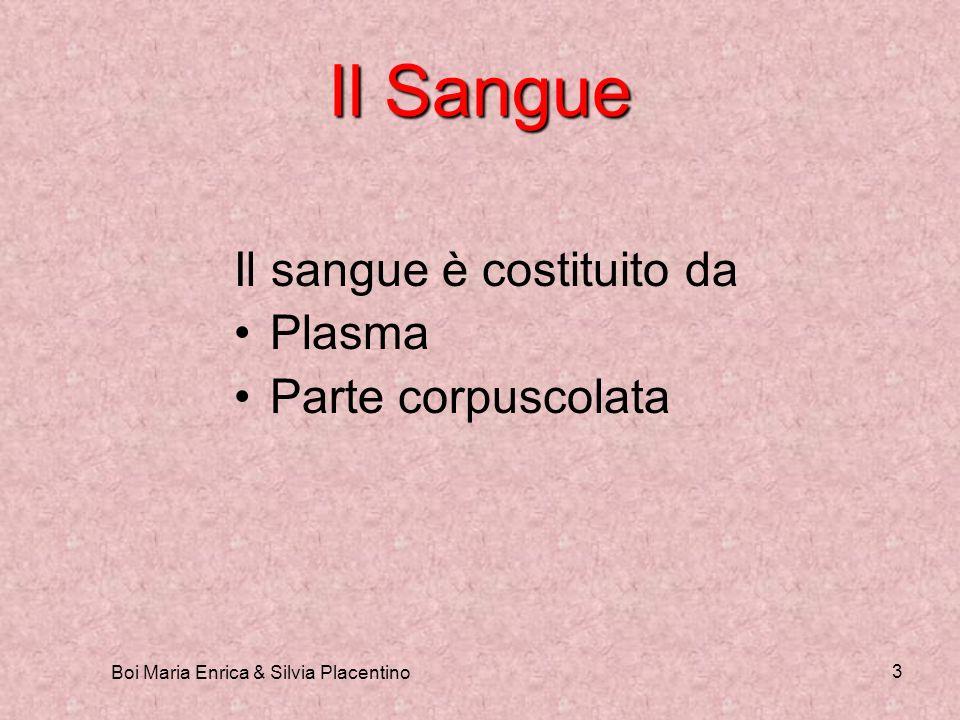 Boi Maria Enrica & Silvia Placentino 3 Il Sangue Il sangue è costituito da Plasma Parte corpuscolata