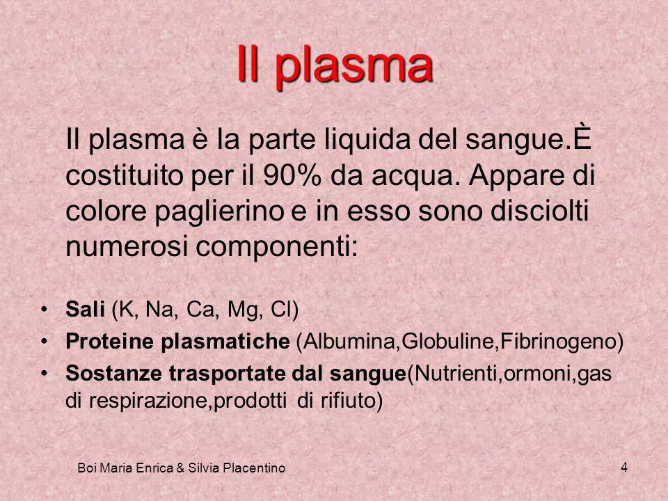 Boi Maria Enrica & Silvia Placentino 4 Il plasma Il plasma è la parte liquida del sangue.È costituito per il 90% da acqua. Appare di colore paglierino