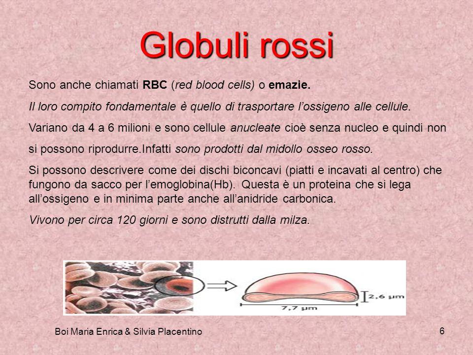 Boi Maria Enrica & Silvia Placentino 6 Globuli rossi Sono anche chiamati RBC (red blood cells) o emazie. Il loro compito fondamentale è quello di tras