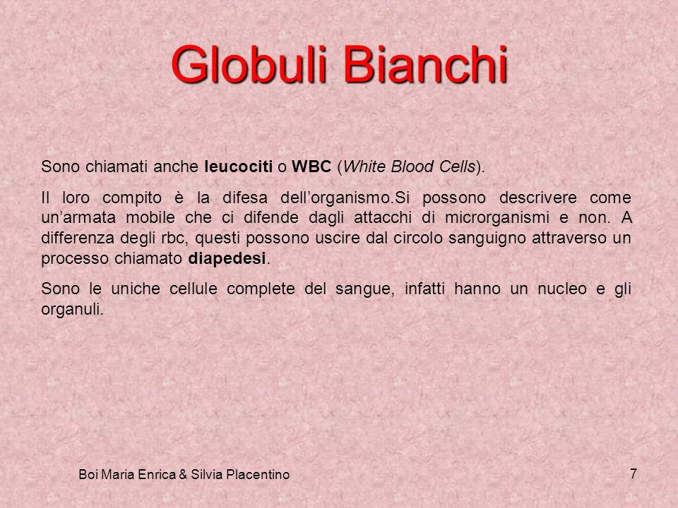 Boi Maria Enrica & Silvia Placentino 7 Globuli Bianchi Sono chiamati anche leucociti o WBC (White Blood Cells). Il loro compito è la difesa dellorgani